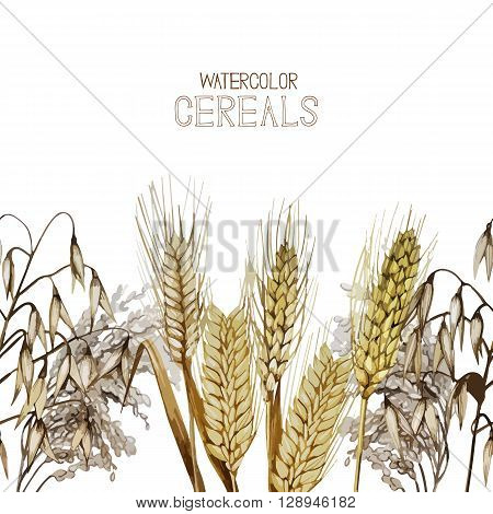 Collection of watercolor cereals. Vector endless design