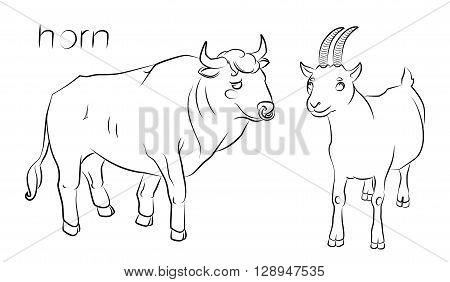 black and white image of a bull and goat - suitable for a child's coloring and not only. For your convenience each significant element is in a separate layer.