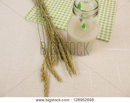 Homemade grain milk from spelt in bottle