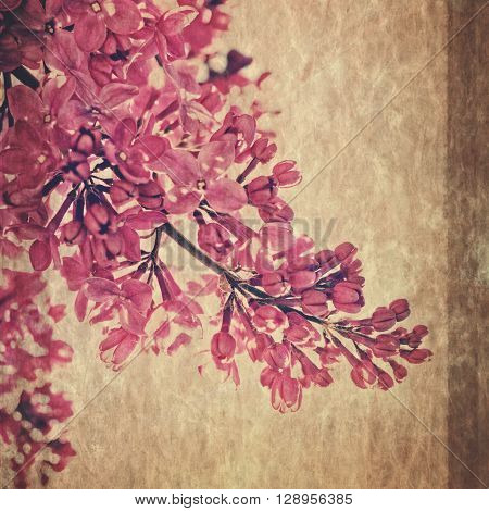 Lilac flower retro fashioned post card with rice paper texture orient japanese style