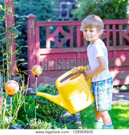 Adorable little kid boy watering plants and flowers with can in garden. Child helping and having fun on warm summer day. Family, garden, gardening, lifestyle