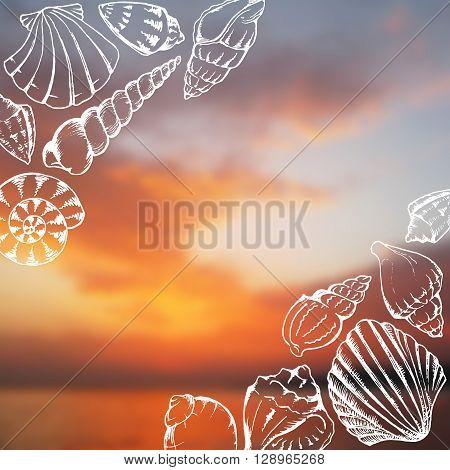 Sea shells doodle line art blurred photo background