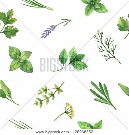 Watercolor seamless pattern hand drawn herb oregano, basil, thyme, sage, mint, chives, rosemary, cilantro, lavender, dill, parsley. Watercolor leaves and branches on a white background.