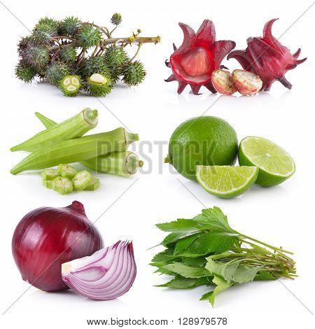 onion White mugwort lime okra roselle Castor oil plant on white background