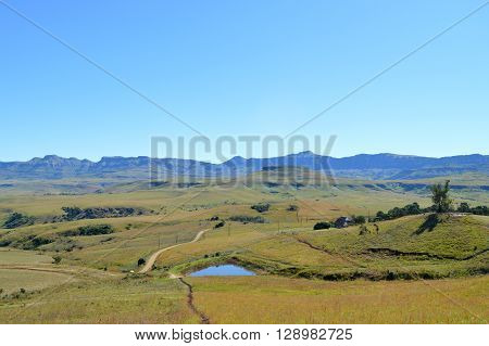 Drakensberg mountains with a pond, grass and blue sky