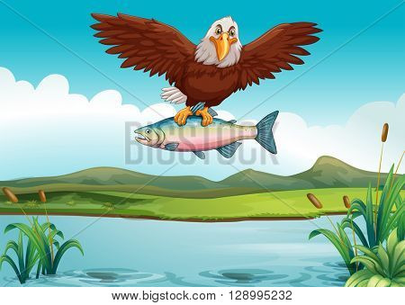 Eagle catching fish in the lake illustration