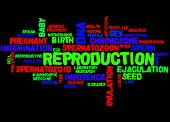 Постер, плакат: Reproduction Word Cloud Concept 7