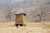 picture of dogon  - A Dogon granary with boab trees in the background - JPG
