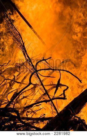 Bonfire 02