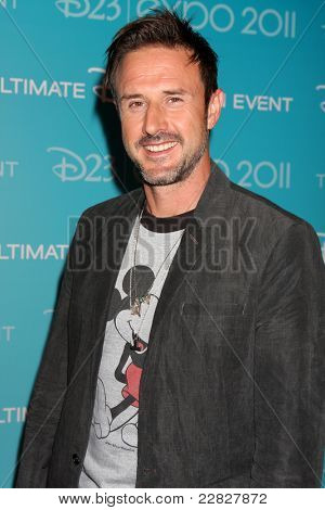 LOS ANGELES - AUG 19:  David Arquette at the D23 Expo 2011 at the Anaheim Convention Center on August 19, 2011 in Anaheim, CA