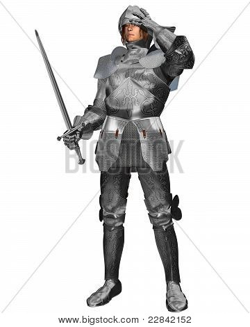 Medieval Knight in Decorated Armour