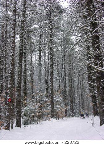 Winter2005  032
