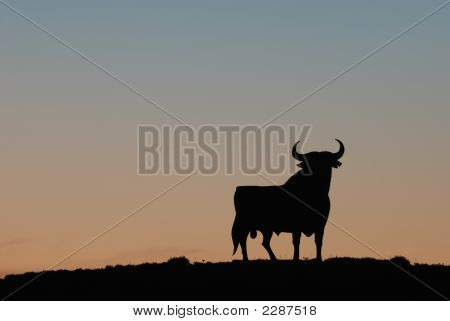 Black Bull At Sunset - Symbol Of Spain