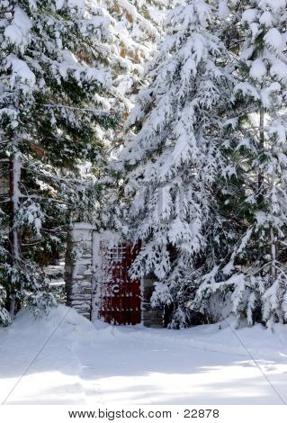 Tor In ein Schnee-Woods