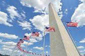 Washington Monument with waving United States National Flags on flagpoles - Washington DC United Sta poster