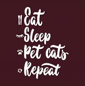 Eat Sleep Pet Cats Repeat - Hand Drawn Lettering Phrase For Animal Lovers On The Bordo Background. F poster