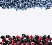 Ripe Blueberries, Blackberries And Raspberries On White Background. Sweet And Juicy Berry At Border  poster