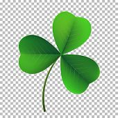Vector Three-leaf Shamrock Clover Icon. Lucky Fower-leafed Symbol Of Irish Beer Festival St Patrick poster