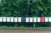 The Row Multicolored Mailboxes In The Park poster
