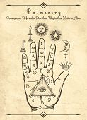 Vintage Palmistry. Esoteric Occult Symbols On Hand, Palm Of Prophecy Retro Vector Illustration poster
