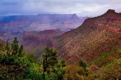 Halfway To The Horseshoe Of Grand Canyon Arizona poster