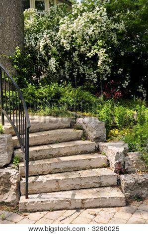 Escalones de piedra naturales