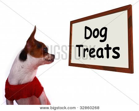 Dog Treats Sign Showing Canine Rewards Or Snacks