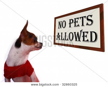 No Pets Allowed Sign Showing Unauthorized Forbidden Zone