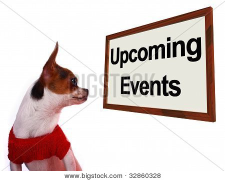 Upcoming Events Sign Showing Future Occasions Schedule For Dogs