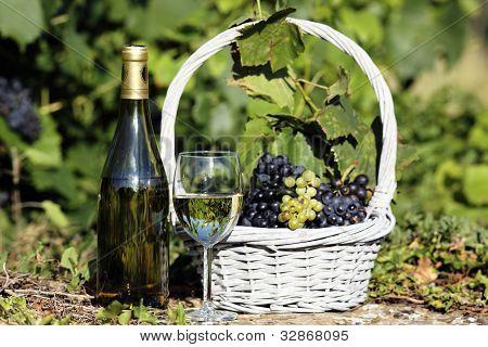 White Wine Spirit