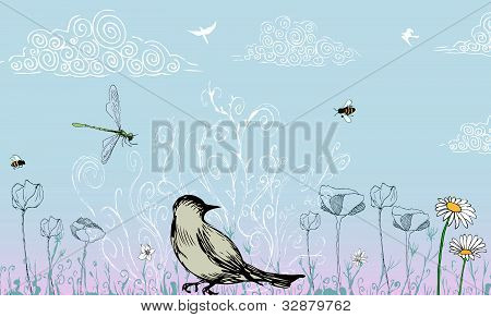 Bird in field of spring