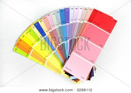 Swatches On White Background