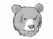 Retro Cartoon Style Drawing Of Head Of An Asiatic Black Bear , An Endangered Wildlife Species On Iso poster