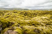 Icelandic Fields Of Lava Covered With Moss Panorama, South Iceland poster