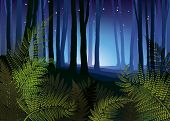 Foggy Forest With Forest Fern Vector Illustration. Tree Trunks In Blue Mist. Fog In Night Forest Vec poster