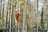 Little Boy With Climbing Gear Climbing Rope Trail Between Pine Trees In Adventure Park. Boy Enjoys C poster