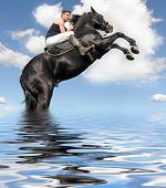 Rearing Horse In The Water