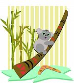 stock photo of didgeridoo  - Here is a cute Koala Bear playing on a Didgeridoo - JPG