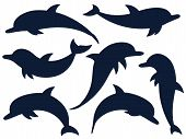 Dolphin, A Collection Of Dark Outlines On A White Background. Vector Illustration. Marine Animals, C poster