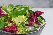 Salad Mix Leaves Background. Fresh Salad Pattern With Rucola, Purple Lettuce, Spinach, Frisee And Ch poster