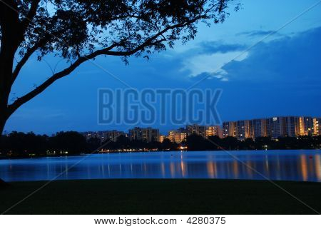 Singapore Housing Under Tree