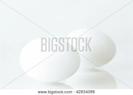 Two White Hen Eggs