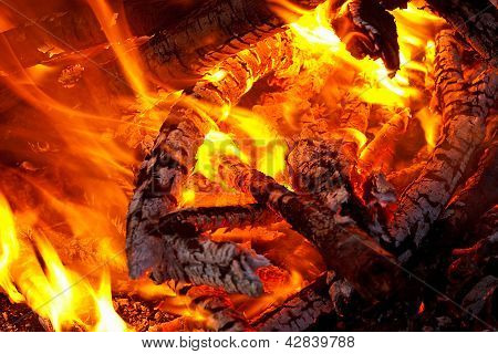 Embers Glowing In Blazing Fire