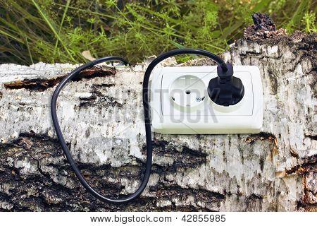 Receptáculo de energia e Switchplug em uma árvore