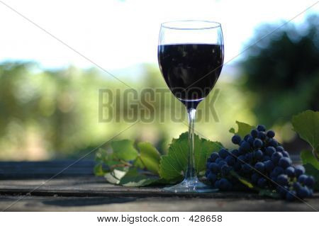 Glass Of Vino