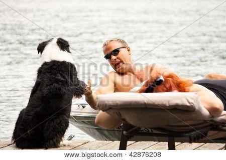 Dog greets boater