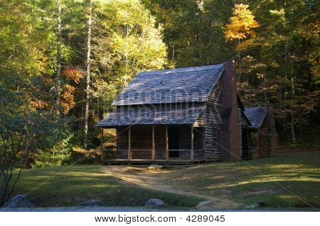 Henry Whitehead Cabin