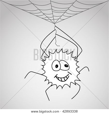 Funny little spider hangs on the web