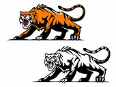 picture of tigress  - Aggressive tiger in hunting pose for mascot design - JPG