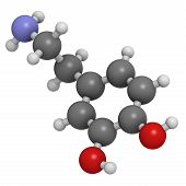 Dopamine Neurotransmitter Molecule, Chemical Structure